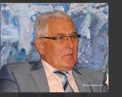 Prof. dr Milorad Nikčević: Vučićevi uslužnici, dalje ruke od crnogorske dijaspore